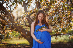 Beautiful pregnant woman in the lush spring garden in full growt Royalty Free Stock Images