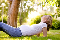 Beautiful pregnant woman lying on the grass in sunny day. lookin Stock Images