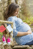 Beautiful pregnant woman outdoor in the park Stock Images