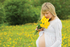 Beautiful pregnant woman outdoor Royalty Free Stock Image