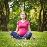 Beautiful pregnant woman in the park Stock Image