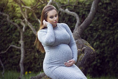 Beautiful pregnant woman in a park. Stock Image