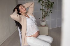 Beautiful pregnant woman portrait genera family happiness stock photography