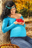 Beautiful pregnant woman with red arrow-wood Royalty Free Stock Image