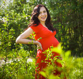 Beautiful pregnant woman in red dress in the flowering spring pa Royalty Free Stock Photos
