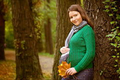 Beautiful pregnant woman relaxing in the park.  Stock Photo