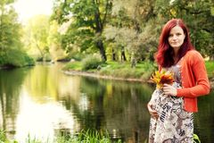 Beautiful pregnant woman walking in autumn park Royalty Free Stock Photos