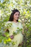 Beautiful pregnant woman walking in blooming spring garden Royalty Free Stock Image