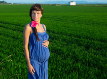 Beautiful pregnant woman walking outdoor nature Royalty Free Stock Photos