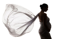 Beautiful pregnant woman in white chiffon shawl Royalty Free Stock Photography