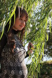 Beautiful pregnant woman by willow tree Stock Photos