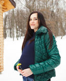 Beautiful pregnant woman in winter clothes outdoors Stock Photos