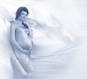 Beautiful pregnant young woman silver Stock Images