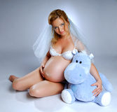 Beautiful pregnet woman Stock Image