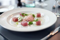 Beautiful presentation of raw Salmon dish. On a white plate in a restaurant Stock Photography