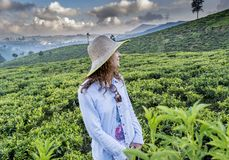 Beautiful pretty woman in the hat standing at the green tea plantations. And pointing direction with finger in Sri Lanka stock photo