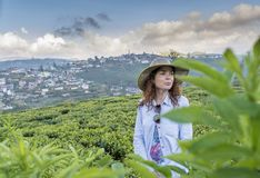 Beautiful pretty woman in the hat standing at the tea plantations. In Sri Lanka stock images