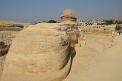 Beautiful profile of the Great Sphinx Royalty Free Stock Photos
