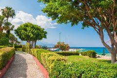 Beautiful promenade with green trees in Kemer, Turkey. Summer landscape, travel and vacation royalty free stock photo