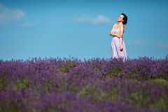 Beautiful provence woman in lavender field Stock Photos