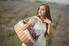 Beautiful provence woman relaxing in lavender field watching on sunset holding basket with lavanda flowers. Series. alluring girl Royalty Free Stock Image