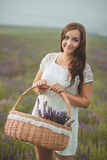Beautiful provence woman relaxing in lavender field watching on sunset holding basket with lavanda flowers. Series. alluring girl Stock Image