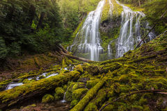 Beautiful Proxy falls in mist, Oregon Stock Photos