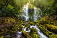 Beautiful Proxy falls in mist, Oregon Royalty Free Stock Photos