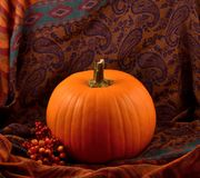 Autumn decoration with pumpkin stock images
