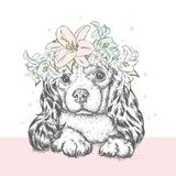 A beautiful puppy in a flower wreath. A pedigree dog in a wreath of lilies. Vector illustration for a postcard or a poster. A beautiful puppy in a flower wreath Stock Images