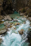 Beautiful pure green turquoise tolminka river flowing with rocks in julian alps Stock Images