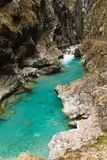 Beautiful pure green turquoise tolminka river flowing with rocks in julian alps Royalty Free Stock Photography