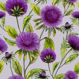 Beautiful purple aster flowers with green leaves on light lilac background. Seamless floral pattern. Watercolor painting. Hand drawn illustration. Can be used Royalty Free Stock Image