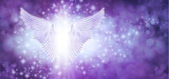 Free Beautiful Purple Blue Sparkle Angel Wings Message Board Stock Photography - 207467532