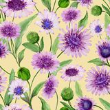 Beautiful purple daisy flowers with closed buds and leaves on light yellow background. Seamless spring pattern. stock illustration