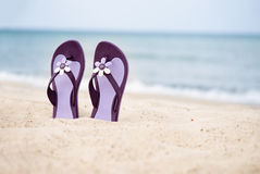 Beautiful purple flip-flops on the beach Stock Photography