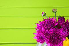 Beautiful purple flower Stock Image
