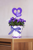 Beautiful purple  flowers in ceramic decorative pot Stock Image
