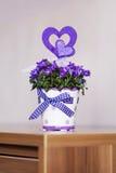 Beautiful purple  flowers in ceramic decorative pot Stock Image
