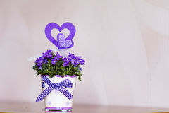 Beautiful purple  flowers in ceramic decorative pot Royalty Free Stock Photography