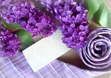 Beautiful purple lilac and tie with place for text. Greeting card. Royalty Free Stock Images