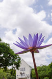 Beautiful Purple Lotus. On blue sky stock images