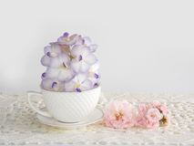 Beautiful purple orchid flower with coffee cup Stock Image