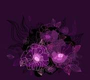 Beautiful purple peony. Hand drawn vector Stock Photo