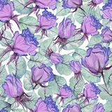 Beautiful purple roses and leaves on white background. Seamless floral pattern. Watercolor painting. Hand drawn and painted illustration. Fabric, wallpaper vector illustration