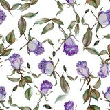 Beautiful purple roses on stems with leaves on white background. Seamless floral pattern. Watercolor painting. Hand drawn and painted illustration. Fabric stock illustration