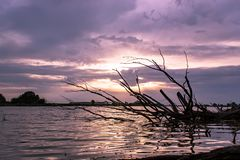 Beautiful purple summer sunset on the lake. royalty free stock images