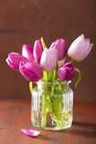 Beautiful purple tulip flowers bouquet in vase.  Royalty Free Stock Images