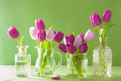 Beautiful purple tulip flowers bouquet in vase Royalty Free Stock Photography
