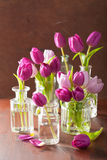 Beautiful purple tulip flowers bouquet in vases.  Royalty Free Stock Image